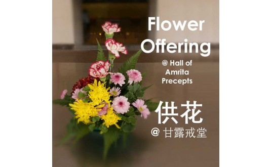 Flower Offering  供花 @ Hall of Amrita Precepts 甘露戒堂