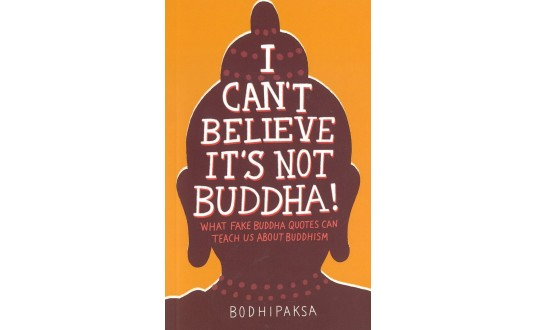 I Can't Believe It's Not Buddha!